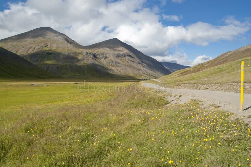 Download долина дороги Исландии вулканическая Стоковое Изображение - изображение насчитывающей цветок, снежок: 17603621