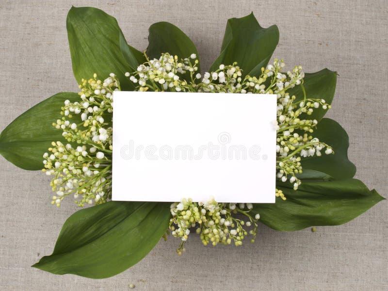 долина лилии поздравлению карточки стоковые изображения rf