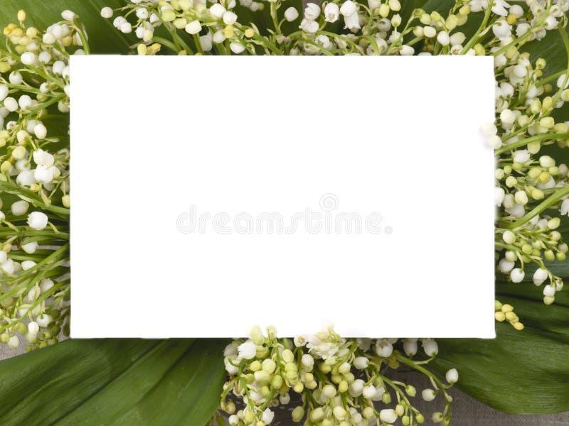 долина лилии поздравлению карточки стоковые изображения