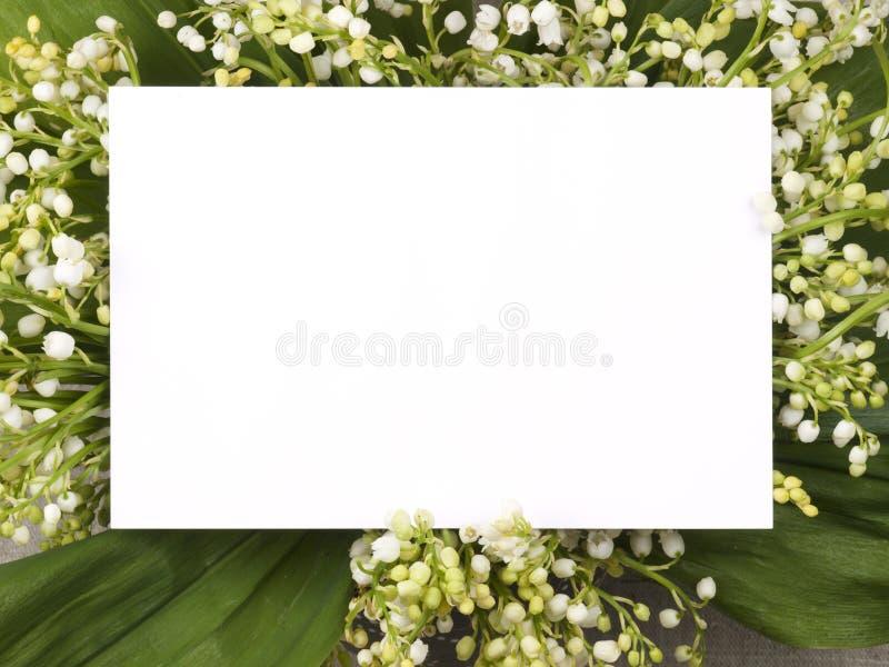 долина лилии поздравлению карточки стоковое фото rf
