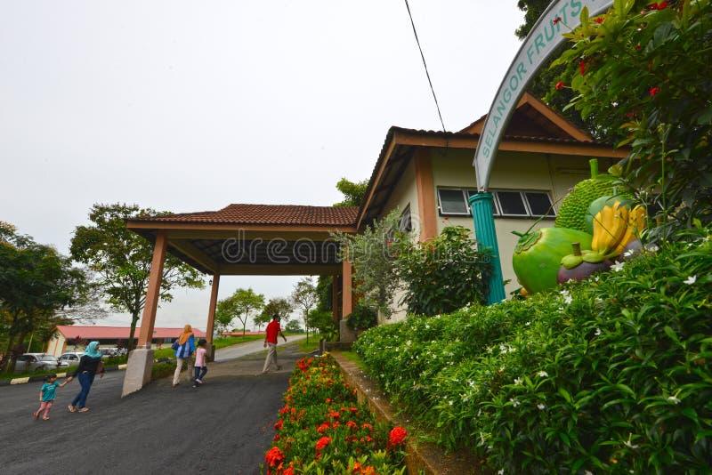 Долина плодоовощ Selangor стоковые изображения rf