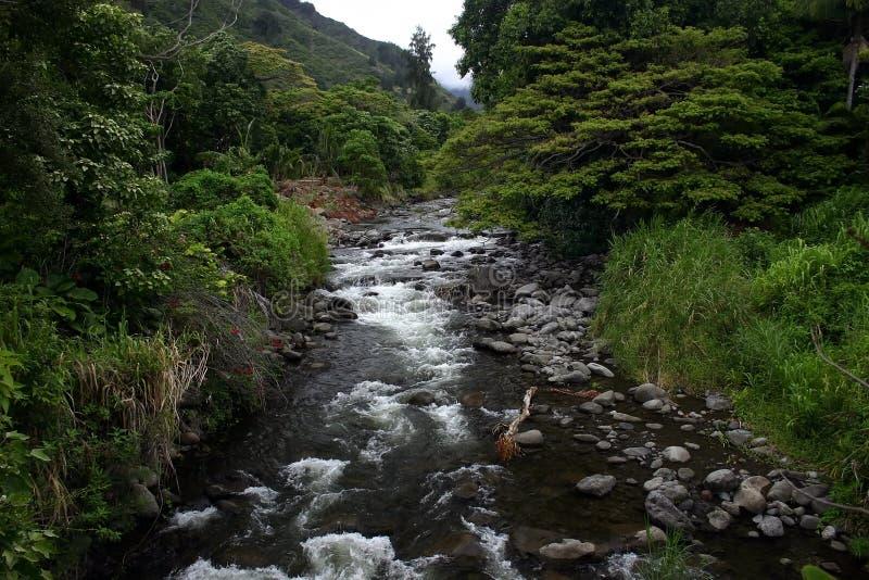 долина потока iao Гавайских островов стоковая фотография rf