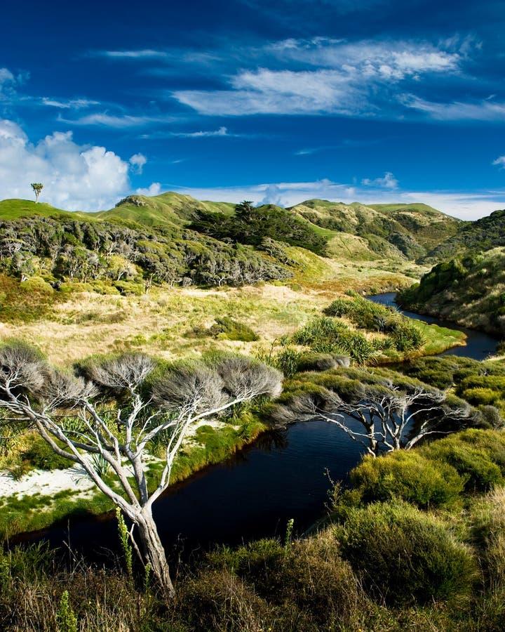 Download долина реки сельская малая стоковое изображение. изображение насчитывающей вал - 6867517