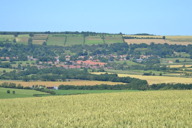 Долина Ampleforth, Англия стоковое изображение rf