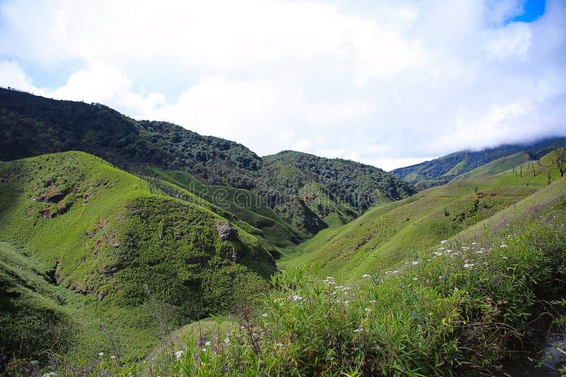 Долина Dzukou Граница положений Nagaland и Manipur, Индии стоковое изображение rf