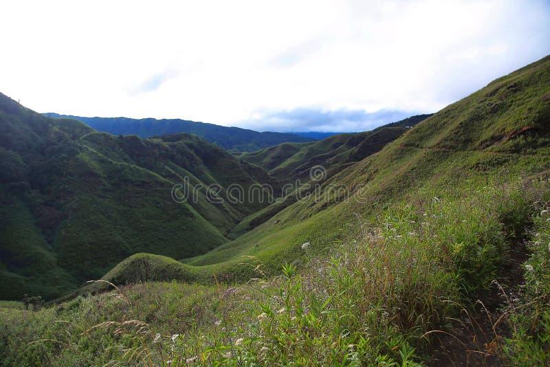 Долина kou ½ ¿ Dzï Граница положений Nagaland и Manipur, Индии стоковое изображение rf