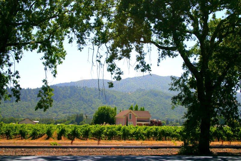 долина sonoma napa california стоковое фото