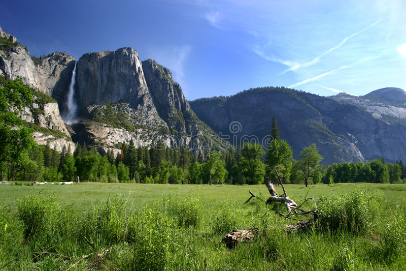 долина Yosemite пола Стоковое Фото