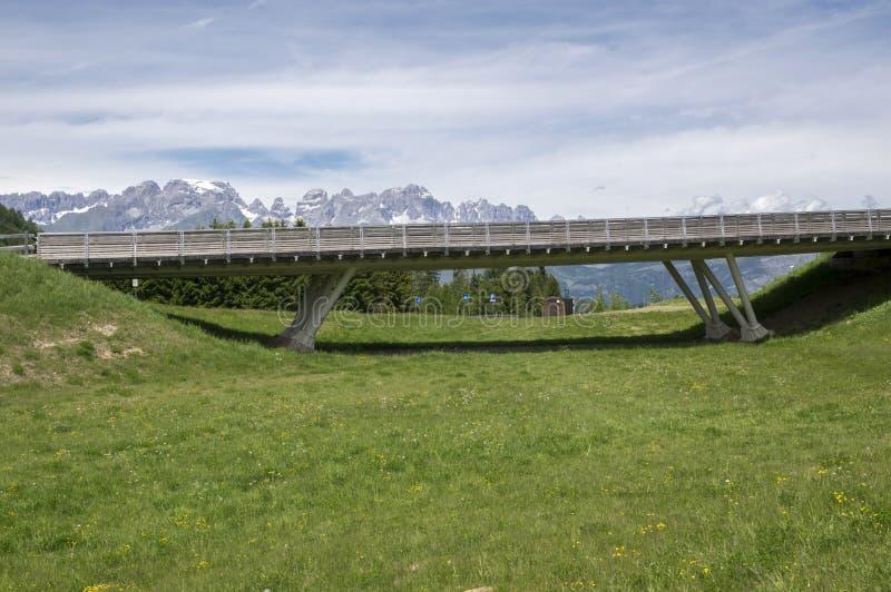 Доломиты, итальянка Альпы, долина и горы стоковые фотографии rf