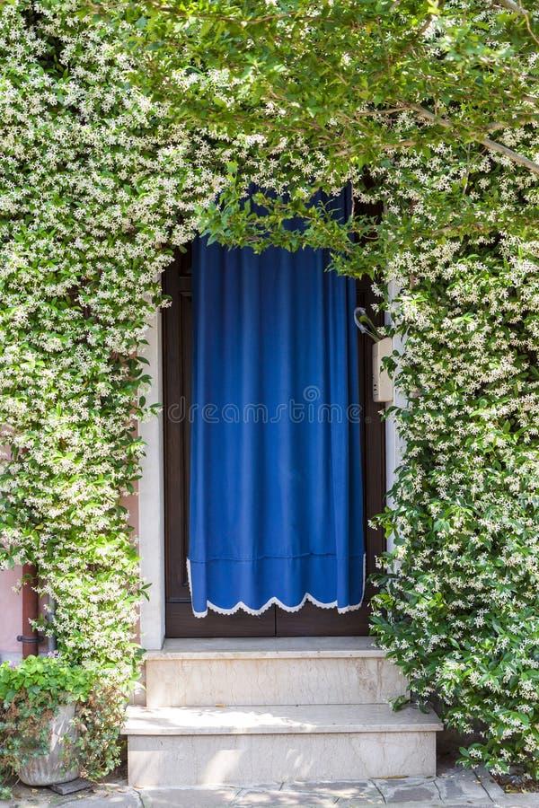 Домашний вход покрытый с зацветая заводами стоковые фотографии rf