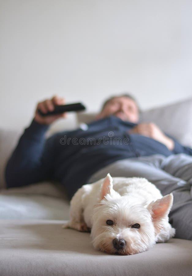 Домашний комфорт смотря ТВ стоковые фото