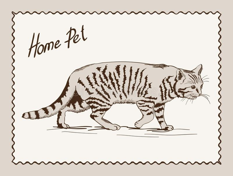 Download Домашний кот любимчика иллюстрация вектора. иллюстрации насчитывающей doodle - 40581671