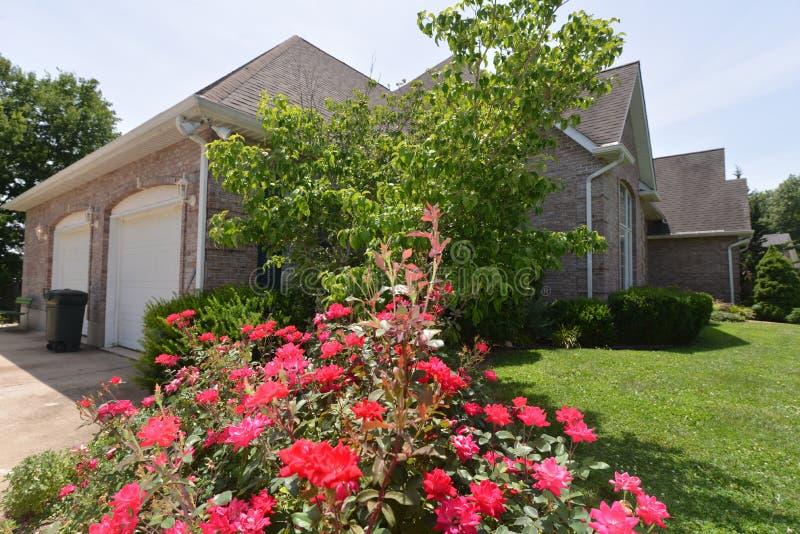 Домашняя сцена с розами и кустарниками стоковое изображение