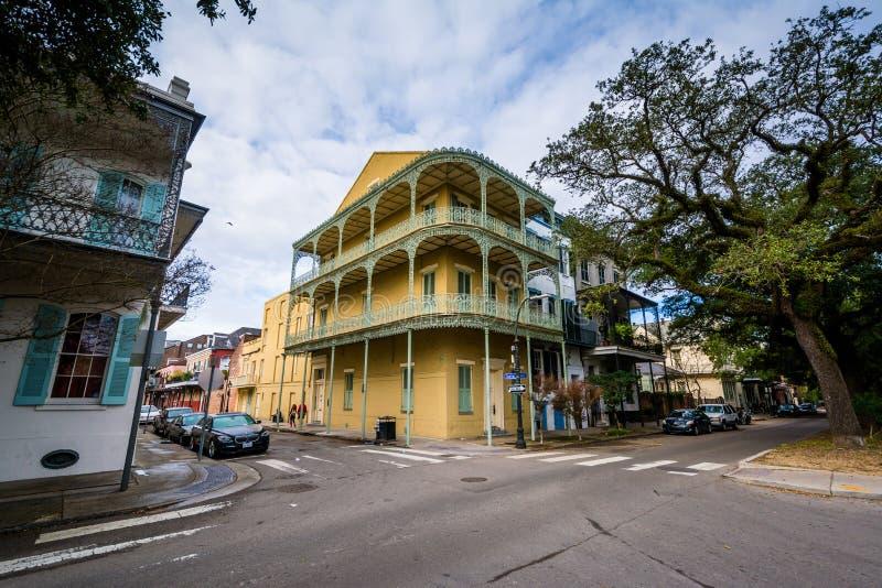 Дома вдоль бульвара эспланады, во французском квартале, Новый Орлеан, Луизиана стоковая фотография rf