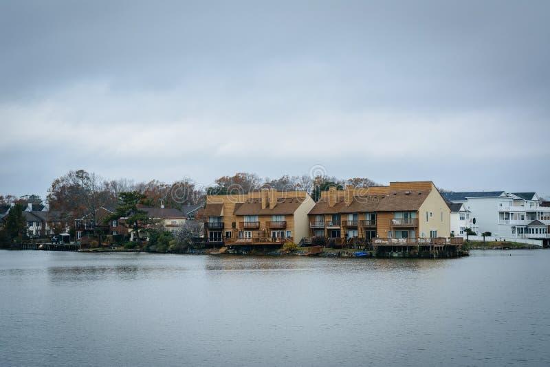 Download Дома вдоль берега падуба озера, в Virginia Beach, Virgini Стоковое Фото - изображение насчитывающей выпуклины, virginia: 81800096