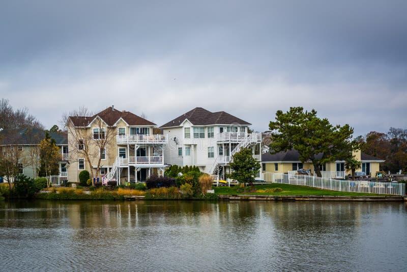 Download Дома вдоль берега падуба озера, в Virginia Beach, Virgini Стоковое Изображение - изображение насчитывающей облака, берег: 81800109