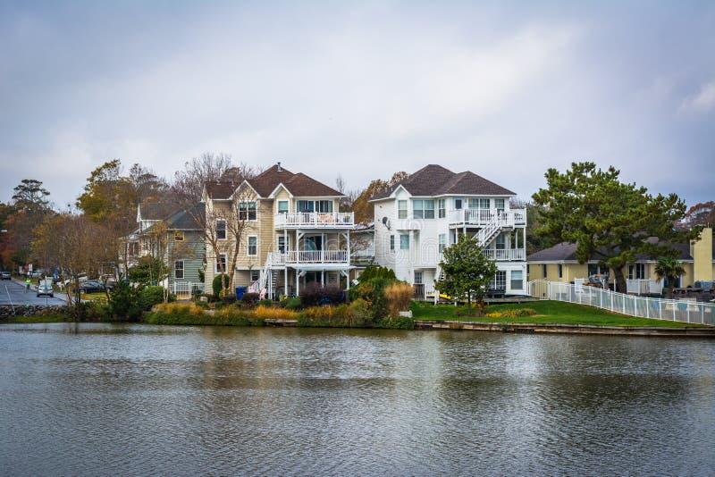Download Дома вдоль берега падуба озера, в Virginia Beach, Virgini Стоковое Фото - изображение насчитывающей атласа, baxter: 81800116