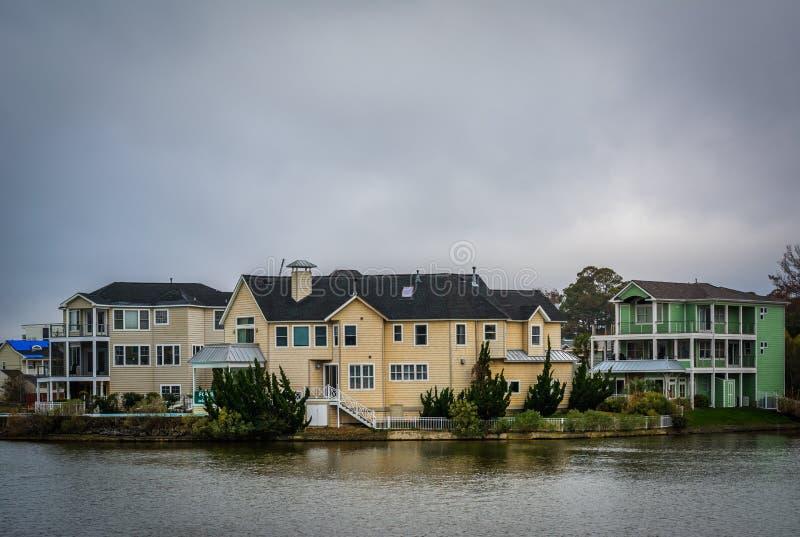 Download Дома вдоль берега падуба озера, в Virginia Beach, Virgini Стоковое Изображение - изображение насчитывающей озеро, зодчества: 81800127