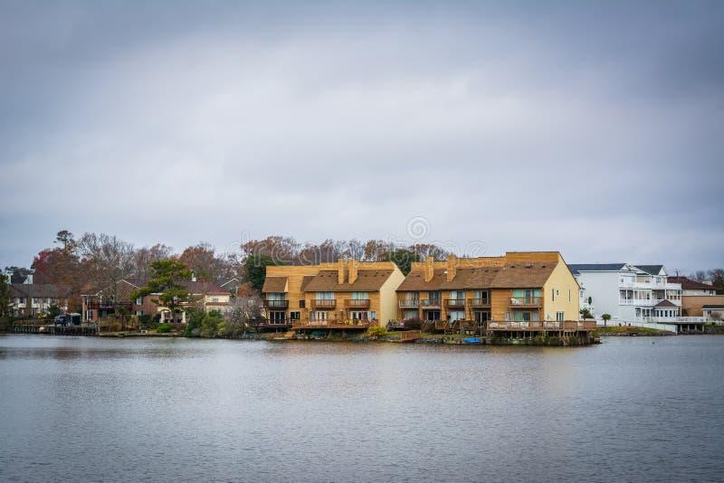 Download Дома вдоль берега падуба озера, в Virginia Beach, Virgini Стоковое Изображение - изображение насчитывающей зодчества, падуб: 81800233