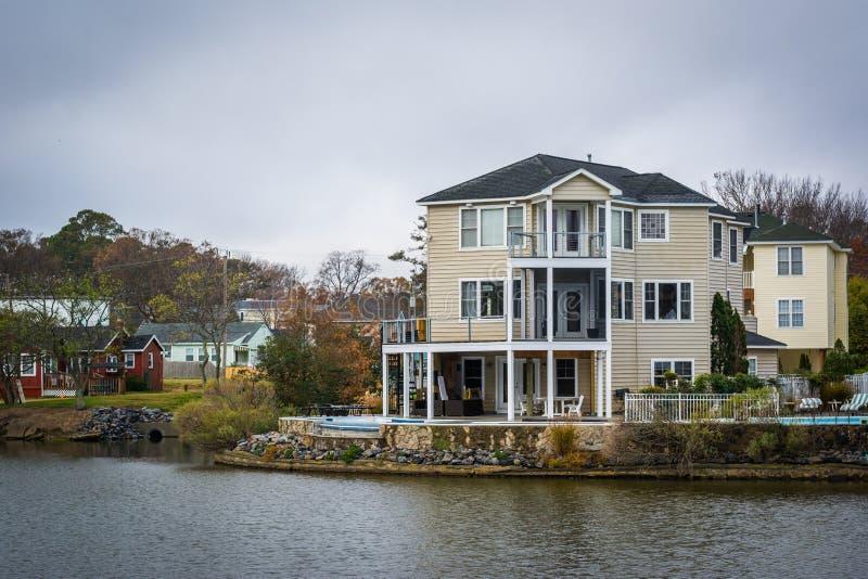 Download Дома вдоль берега падуба озера, в Virginia Beach, Virgini Стоковое Фото - изображение насчитывающей турист, пасмурно: 81800254