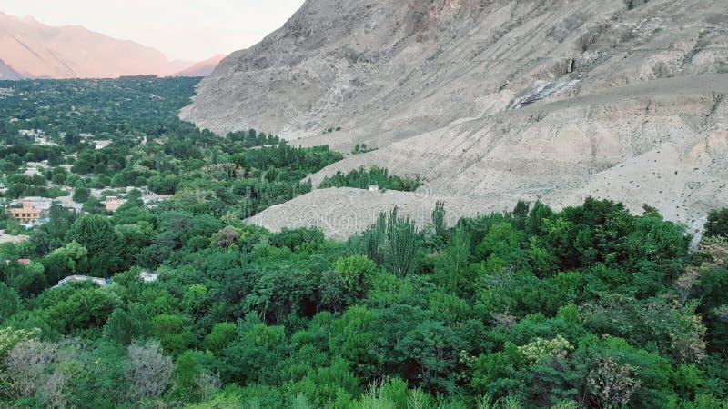 Дома и вид на город леса стоковое фото