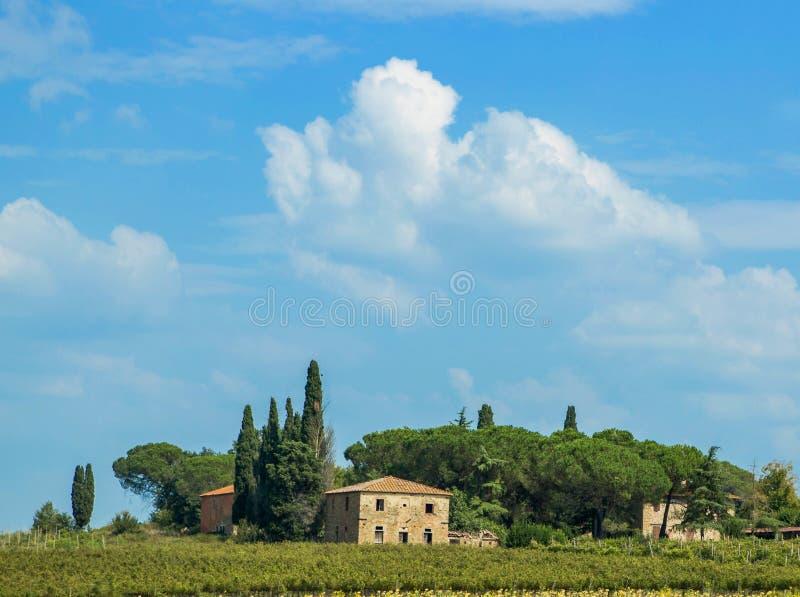 Дома холма в Тоскане стоковое фото rf