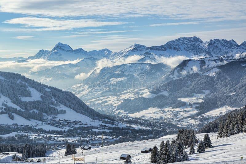 Домен лыжи большой возвышенности стоковые изображения
