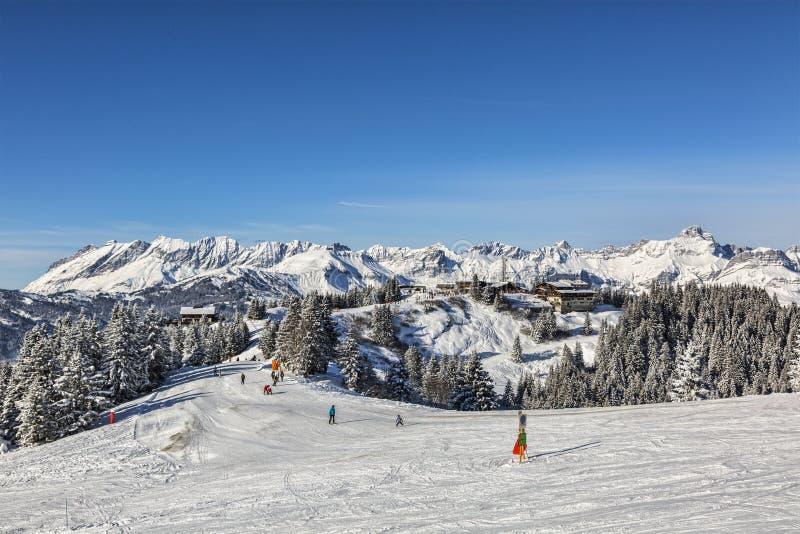 Домен лыжи большой возвышенности стоковая фотография
