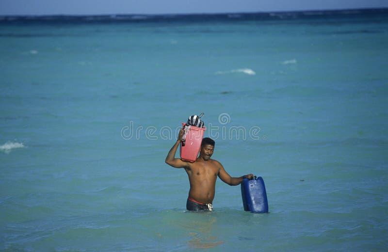 ДОМИНИКАНСКАЯ РЕСПУБЛИКА МОРЯ АМЕРИКИ CARIBBIAN стоковая фотография