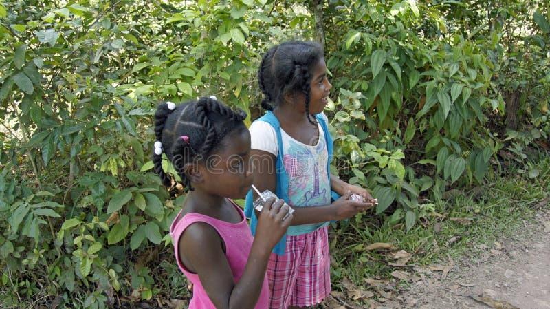 Доминиканский ребенок стоковое фото rf