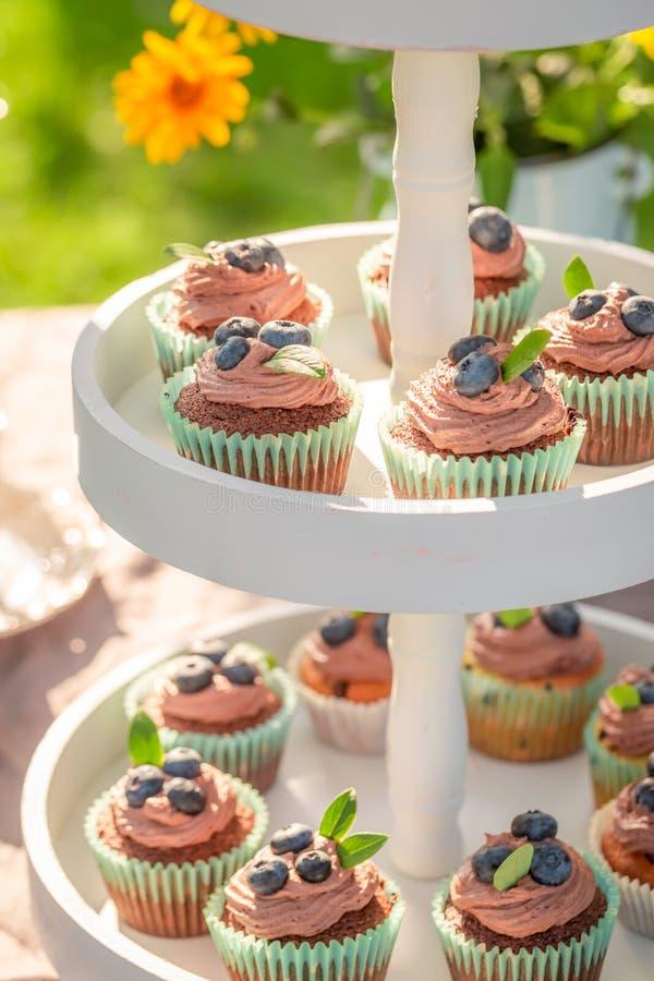 Домодельная булочка шоколада служила с кофе в саде лета стоковые изображения