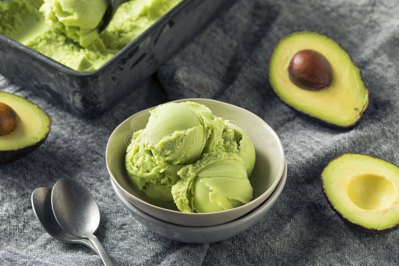 Домодельное зеленое органическое мороженое авокадоа стоковое изображение