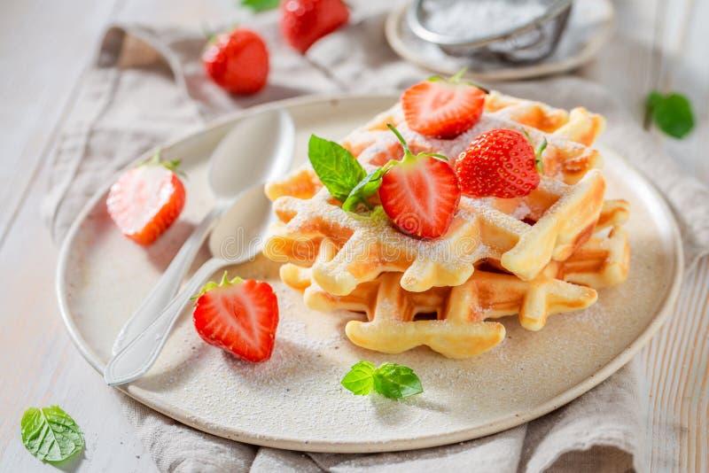 Домодельные вафли с напудренным сахаром и сладкими плодами стоковая фотография