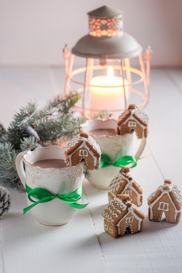 Домодельные коттеджи пряника с вкусным какао в вечере зимы рождества стоковое фото