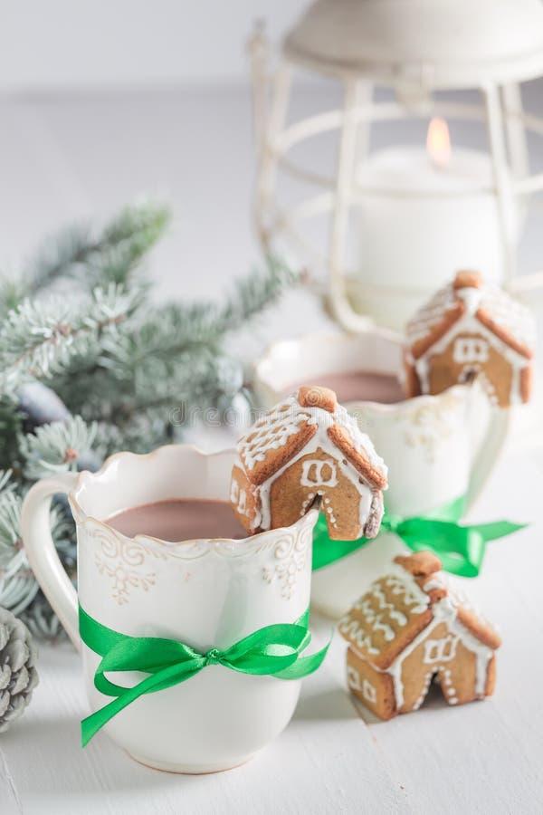 Домодельные коттеджи пряника с горячим шоколадом в вечере зимы рождества стоковые фото