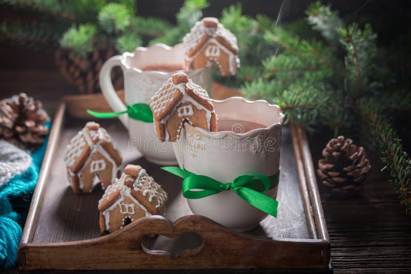 Домодельные коттеджи пряника с сладостным питьем в вечере рождества стоковые фото