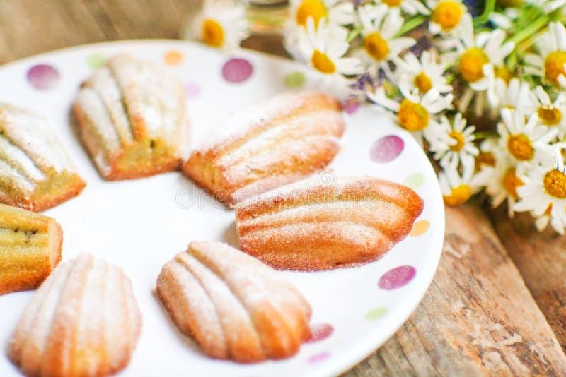 Домодельные сладостные ванильные печенья Madeleine стоковое изображение