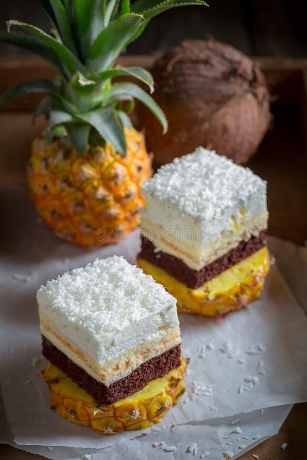 Домодельный белый торт с печеньями ананаса, кокоса и шоколада стоковые изображения