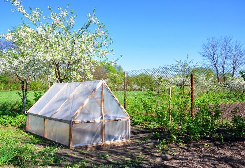 Домодельный малый парник на предпосылке вегетации весны стоковые изображения