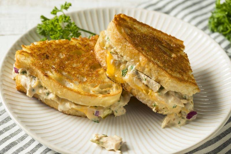 Домодельный провозглашанный тост сандвич Melt тунца стоковая фотография