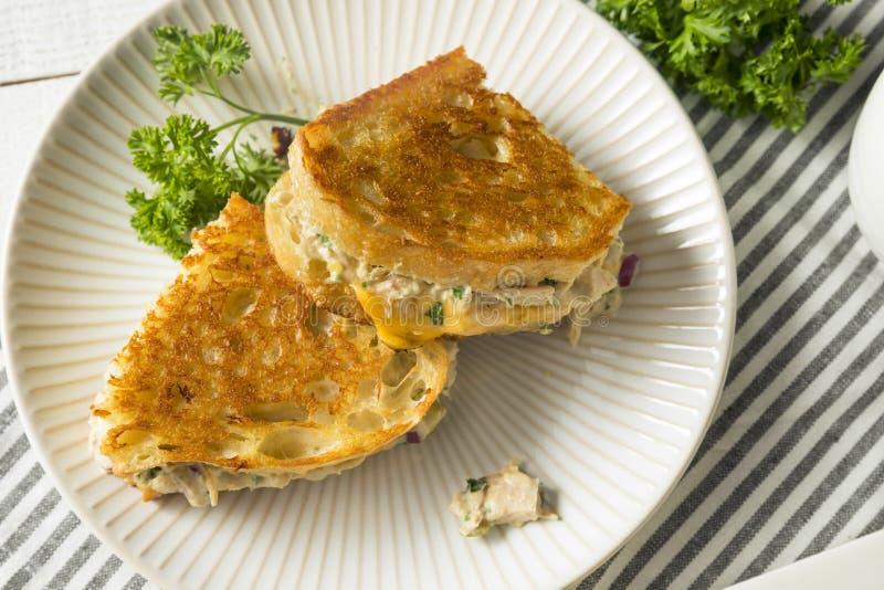 Домодельный провозглашанный тост сандвич Melt тунца стоковое изображение