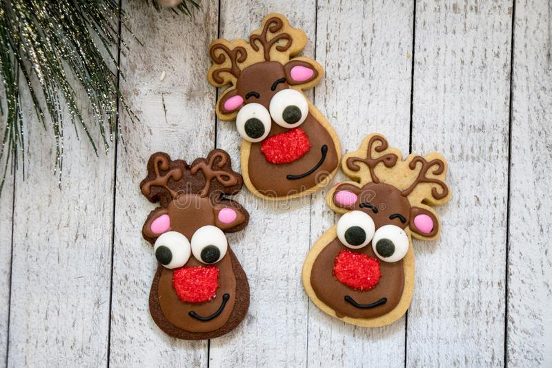 Домодельный северный олень рождества украсил печенья сахара, изолированные на деревянном bcakground стоковые фото