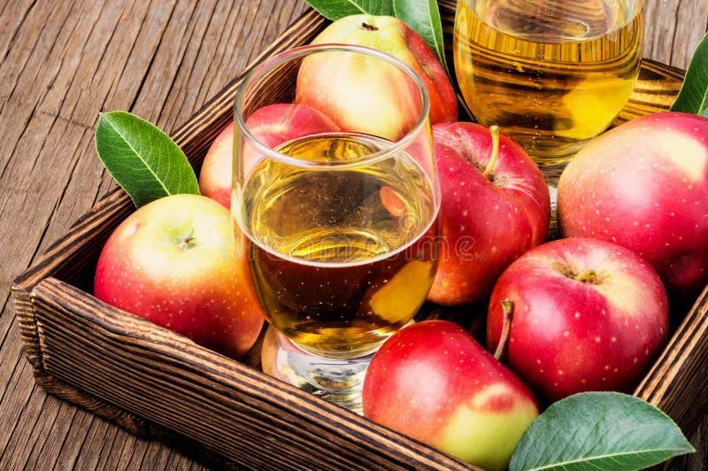 Домодельный сидр от зрелых яблок стоковая фотография