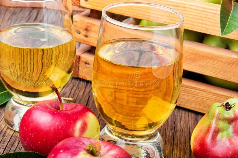 Домодельный сидр от зрелых яблок стоковое изображение rf