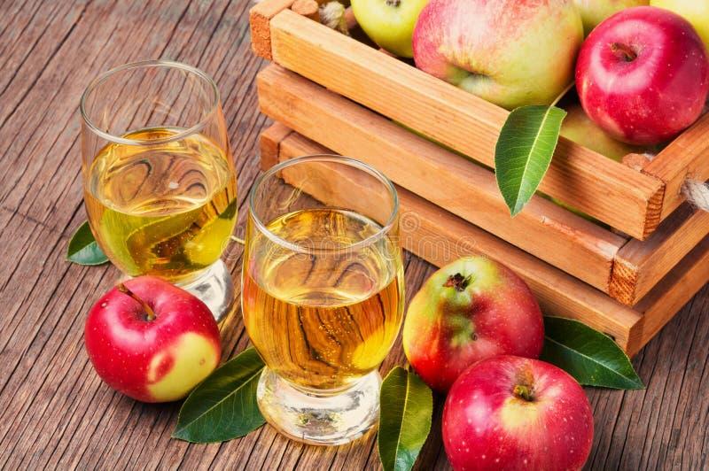Домодельный сидр от зрелых яблок стоковая фотография rf
