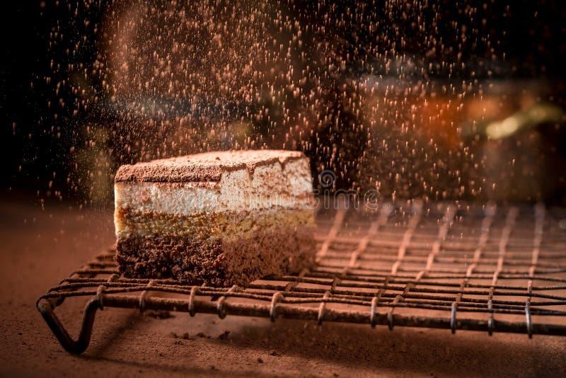 Домодельный торт тирамису с какао, mascarpone и печеньями стоковое фото
