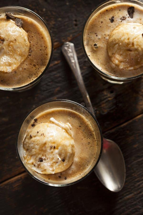 Домодельное Affogato с мороженым стоковая фотография rf
