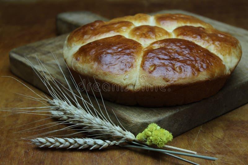 Домодельные пироги на деревянной доске стоковые фотографии rf