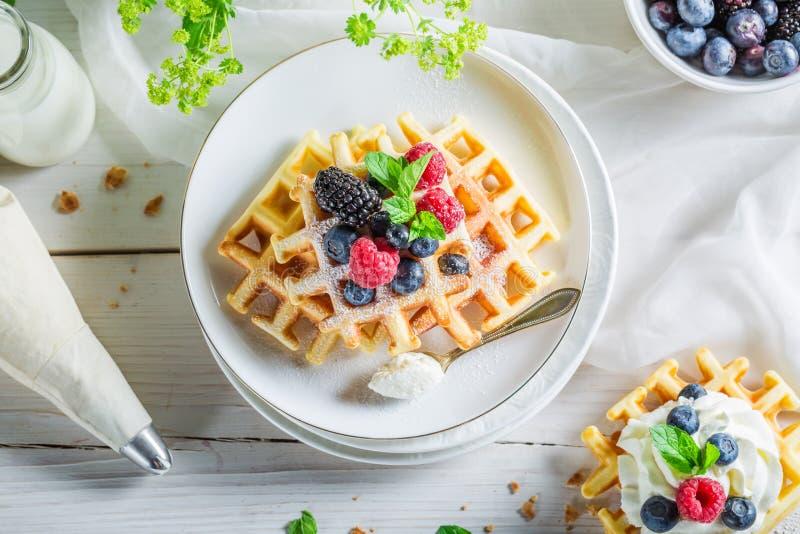 Домодельные ягоды с waffles и взбитой сливк стоковые фото