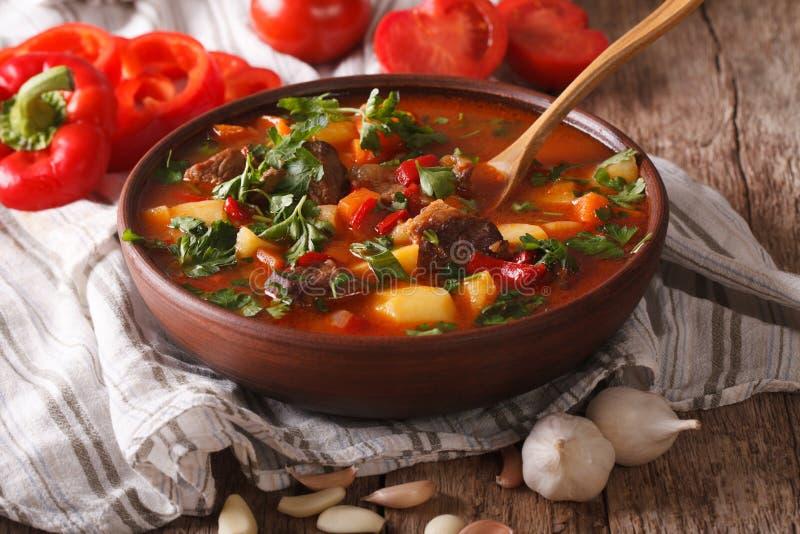 Домодельный венгерский конец-вверх bogracs супа гуляша горизонтально стоковое фото rf